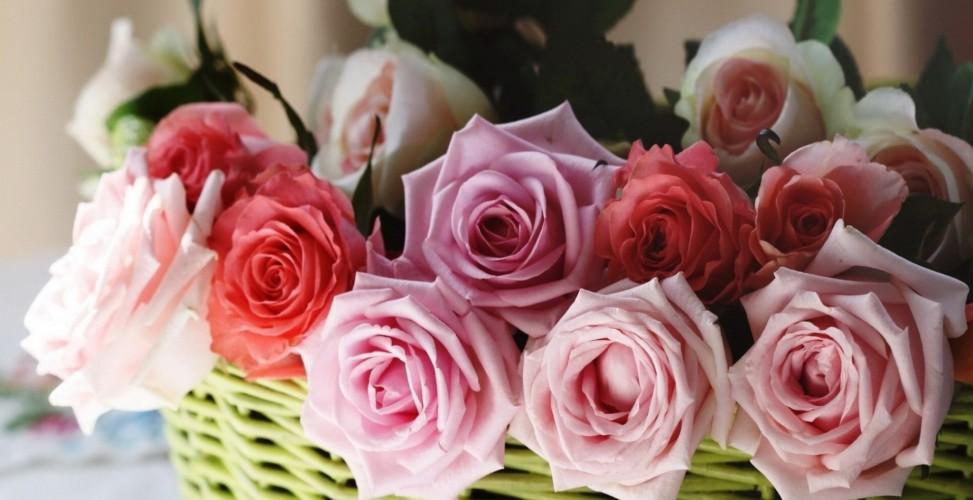 Розы по оттенкам