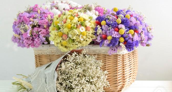 сухцветы