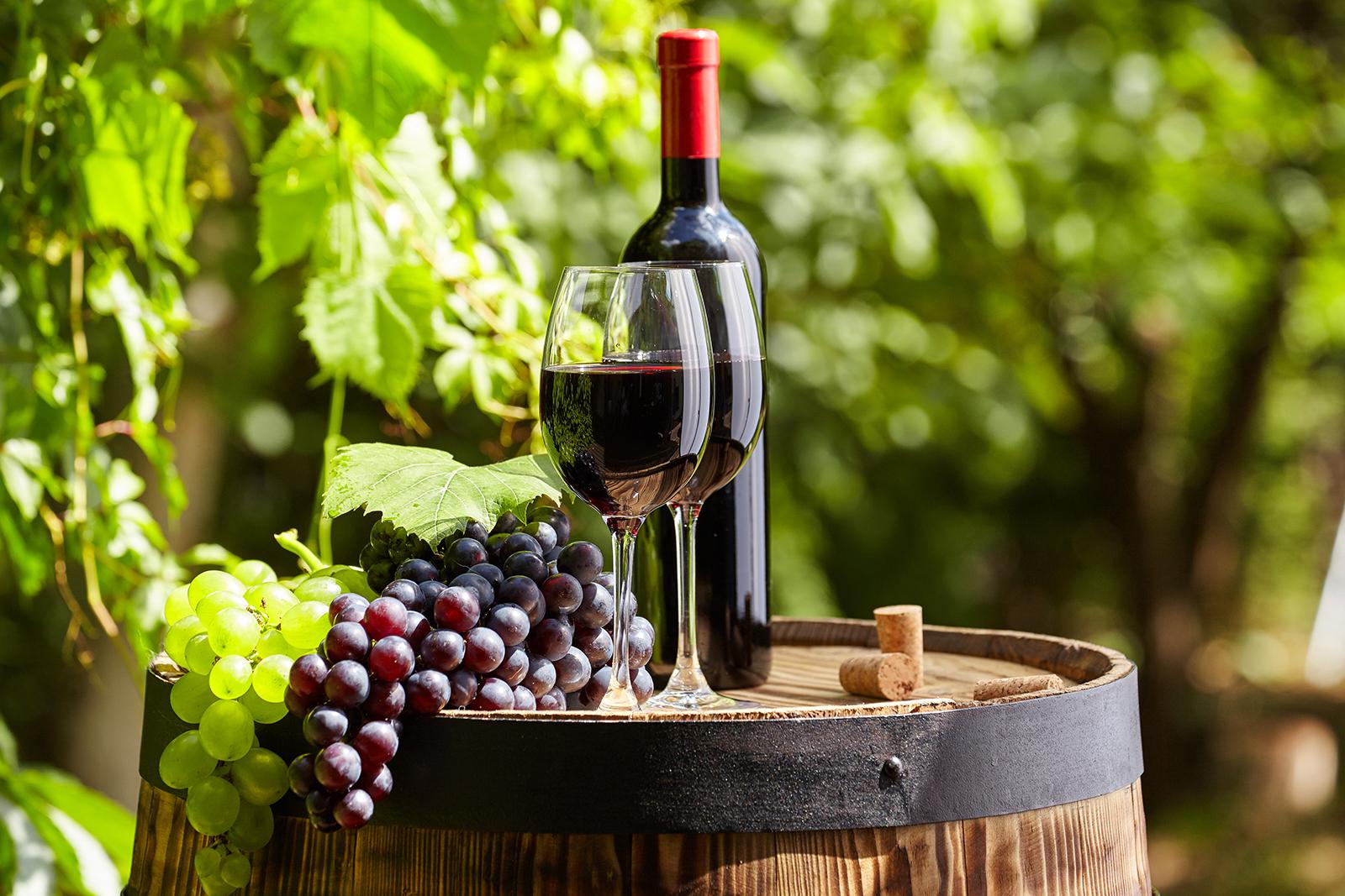 Не употребляют перебродившее вино